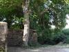casa_vistas_exteriores_arbol